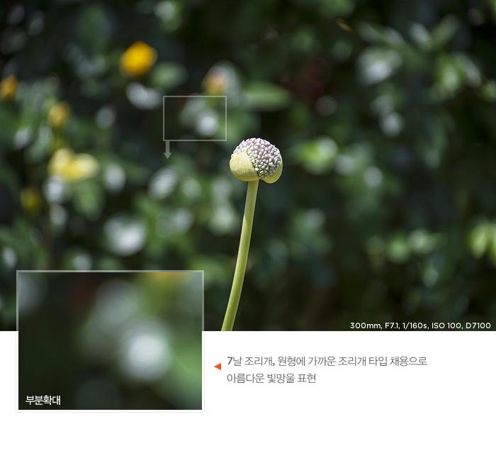 7날 조리개, 원형에 가까운 조리개 타입 채용으로 아름다운 빛망울 표현한 샘플 사진, 보케 확대 이미지