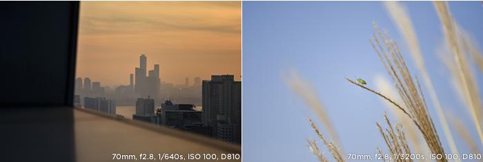 70mm, f2.8, 1/640s, ISO 100, D810 / 70mm, f2.8, 1/3200s, ISO 100, D810 샘플사진